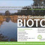 Bienenwald-1901_1285x850