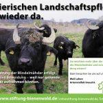 Bienenwald-1905_1285x850