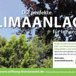 Bienenwald-1907_1285x850
