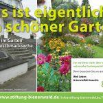 Bienenwald_1906_1285x850